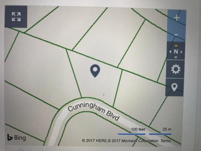 Cunningham Blvd, Harriman, TN 37748 (#1053201) :: Billy Houston Group