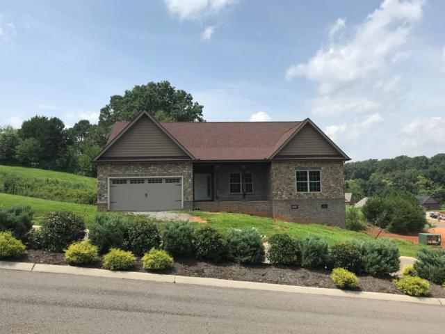 175 Conner Lane, Lenoir City, TN 37772 (#1053267) :: Billy Houston Group