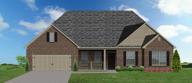 10609 Bald Cypress Lane, Knoxville, TN 37922 (#1053288) :: Billy Houston Group