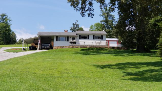 1186 Scenic Lakeview Drive, Spring City, TN 37381 (#1053340) :: Billy Houston Group
