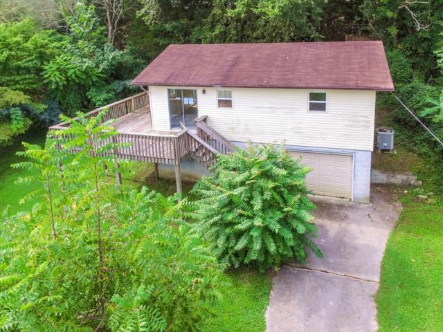 199 Honey Creek Lane, Rutledge, TN 37861 (#1053359) :: Billy Houston Group