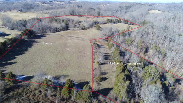 Minton Rd, New Tazewell, TN 37825 (#1053407) :: Billy Houston Group