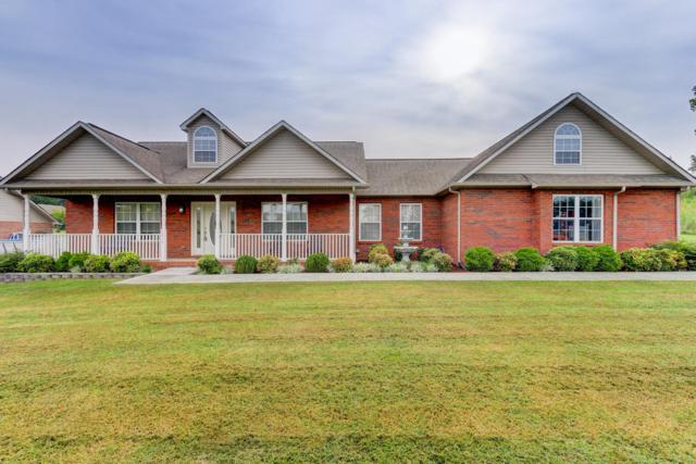 1818 River Vista Circle, Sevierville, TN 37876 (#1053413) :: Billy Houston Group