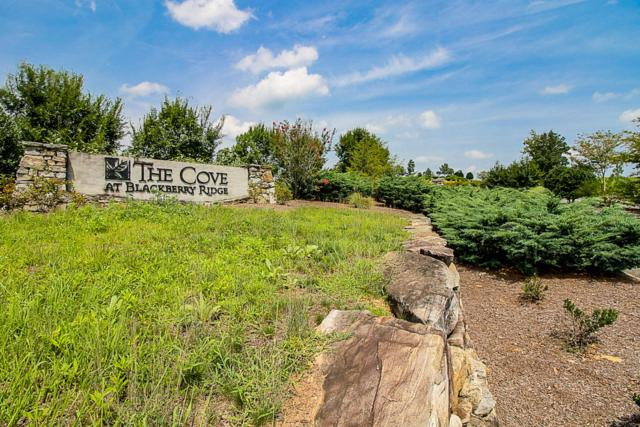 Eagle Nest Drive, Loudon, TN 37774 (#1053423) :: Realty Executives Associates