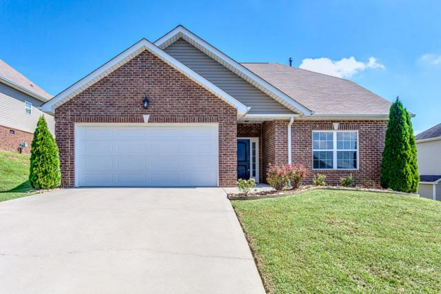 2507 Ancient Oak Lane, Knoxville, TN 37931 (#1053480) :: Billy Houston Group