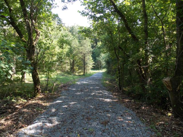 Whites Mill Rd, Maryville, TN 37803 (#1053508) :: Billy Houston Group
