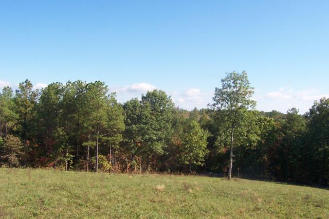 Lot 46 Nichol Creek Drive, Jamestown, TN 38556 (#1053523) :: Venture Real Estate Services, Inc.