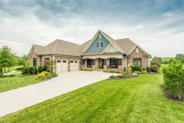 672 Indian Cave Drive, Loudon, TN 37774 (#1053531) :: Realty Executives Associates