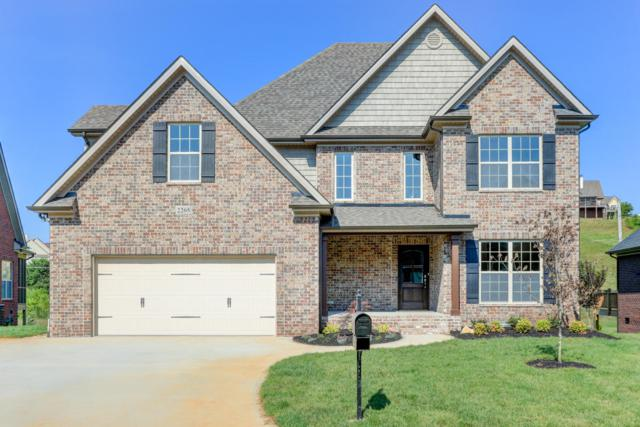 2313 Omaha Lane, Knoxville, TN 37932 (#1053581) :: Billy Houston Group