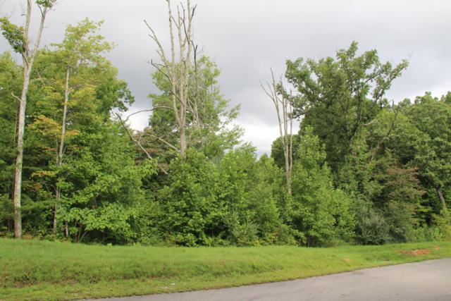 501 Cedar Gate Lane, LaFollette, TN 37766 (#1053599) :: Realty Executives Associates