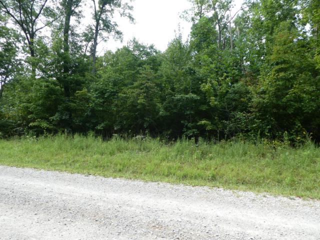Cedar Ridge Point, Jamestown, TN 38556 (#1053775) :: Billy Houston Group