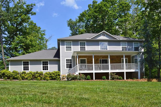 1610 Riceland Drive Drive, Sevierville, TN 37862 (#1053782) :: Billy Houston Group