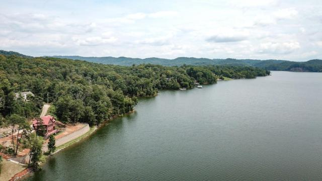 Channel Point Drive, Mooresburg, TN 37811 (#1053814) :: Billy Houston Group