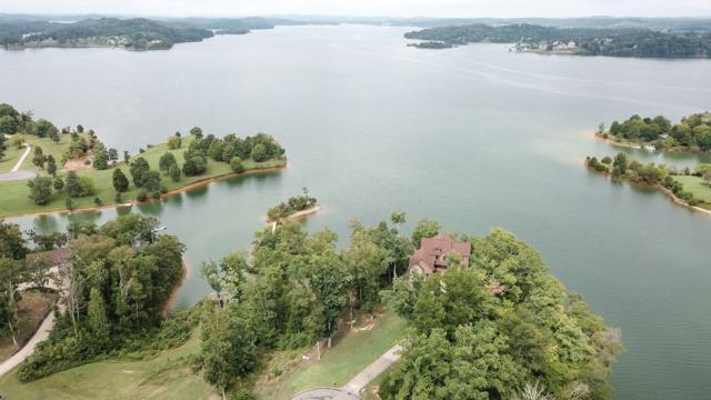 Cypress Drive, Dandridge, TN 37725 (#1053818) :: Billy Houston Group