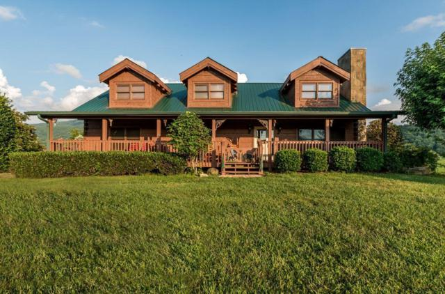 3114 Jh Headrick Drive, Sevierville, TN 37862 (#1053858) :: Billy Houston Group