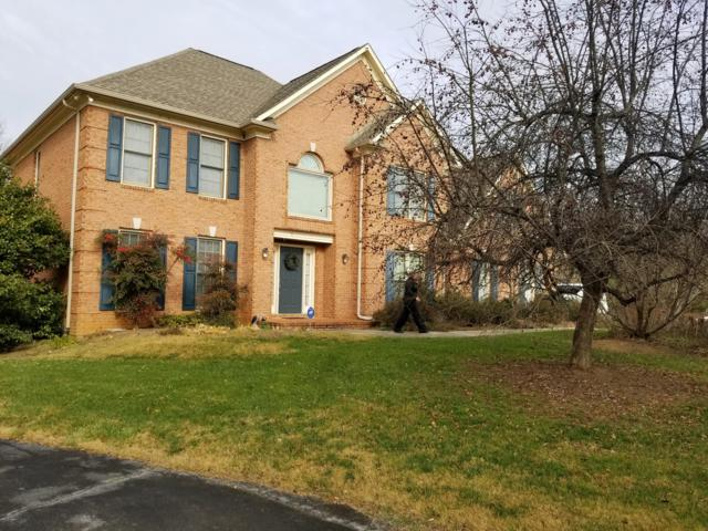 10629 Eagles View Drive, Knoxville, TN 37922 (#1053896) :: Billy Houston Group