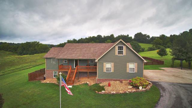 1392 Holston River Drive, Rutledge, TN 37861 (#1053949) :: Billy Houston Group