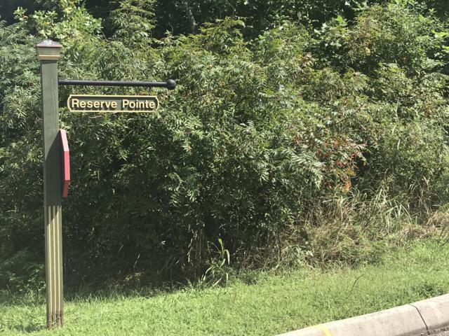 300 Enclave Way, Kingston, TN 37763 (#1054084) :: Billy Houston Group