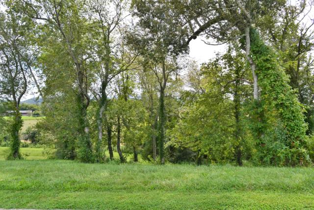 Lot 1 Rippling Waters Circle, Sevierville, TN 37876 (#1054093) :: Shannon Foster Boline Group