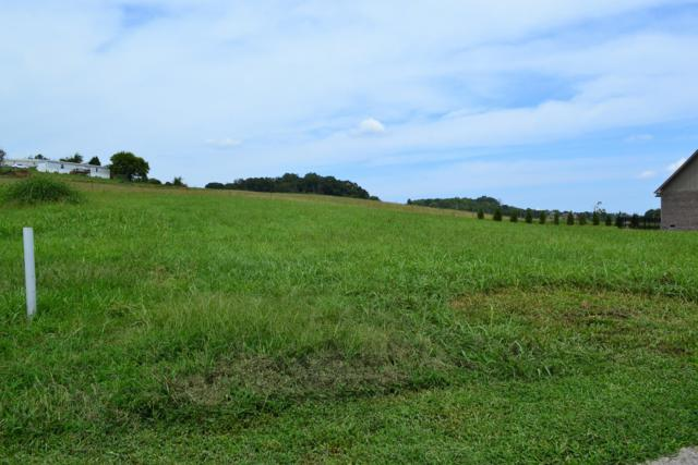 Lot 27 Rippling Waters Circle, Sevierville, TN 37876 (#1054108) :: The Sands Group