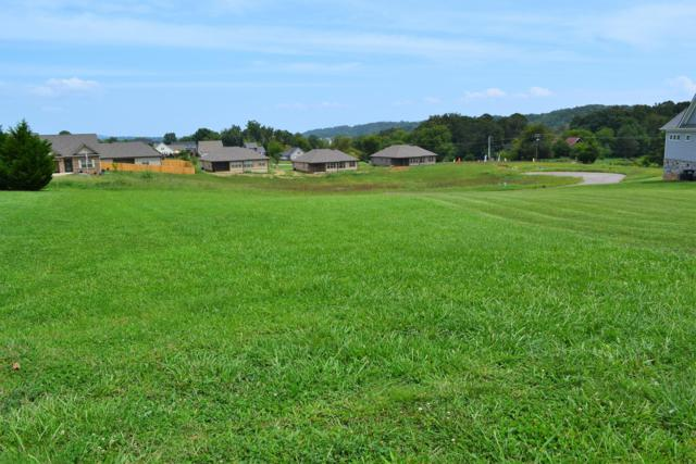 Lot 40 Rippling Waters Circle, Sevierville, TN 37876 (#1054109) :: Shannon Foster Boline Group