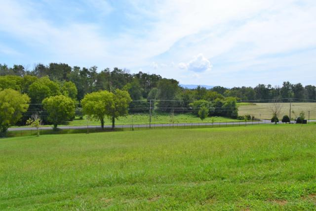 Lot 44 Rippling Waters Circle, Sevierville, TN 37876 (#1054114) :: Shannon Foster Boline Group