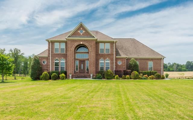 104 Charleston Place, Madisonville, TN 37354 (#1054195) :: Billy Houston Group