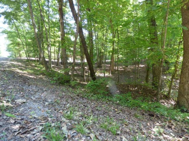 Lot 399 Fawnwood Drive, Spring City, TN 37381 (#1054275) :: Venture Real Estate Services, Inc.