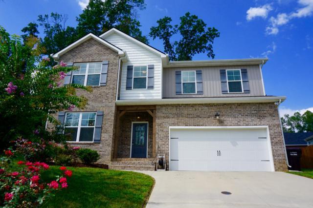8005 Beaver Hill Lane, Knoxville, TN 37931 (#1054338) :: Billy Houston Group