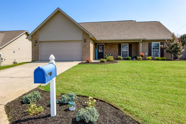1114 Cherbourg Drive, Maryville, TN 37801 (#1054392) :: Billy Houston Group