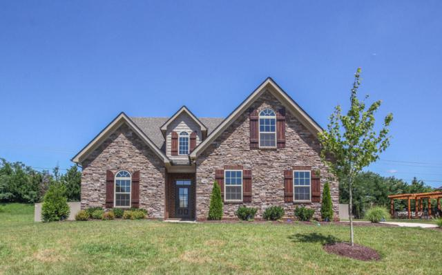 1310 Edenbridge Drive, Alcoa, TN 37701 (#1054442) :: Billy Houston Group