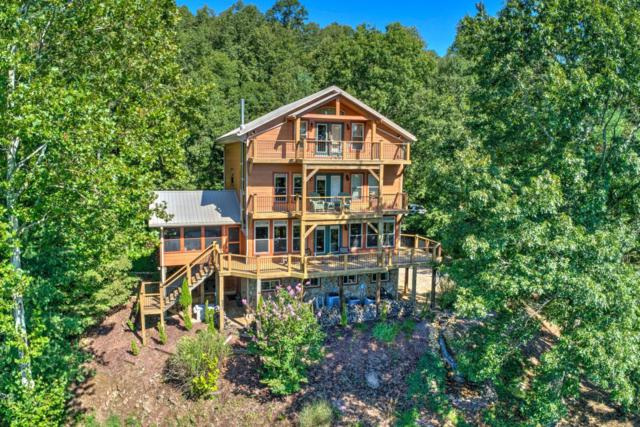 133 Water Tank Rd, Butler, TN 37640 (#1054450) :: Billy Houston Group