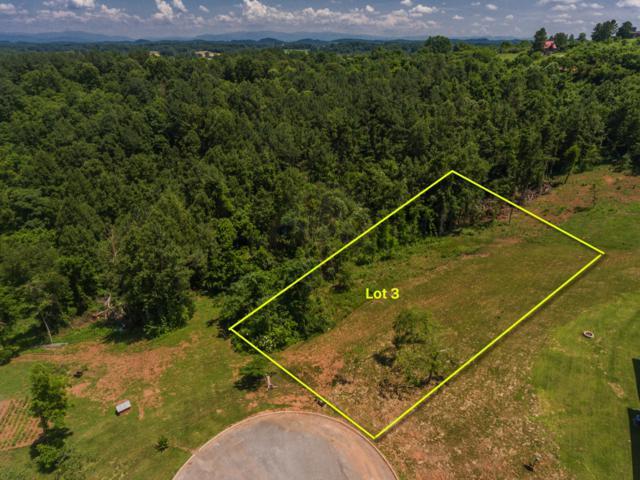 3 Eagle Ridge Point, Philadelphia, TN 37846 (#1054464) :: Billy Houston Group