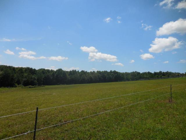 Nichol Creek Pkwy Lot 47, Jamestown, TN 38556 (#1054486) :: Billy Houston Group