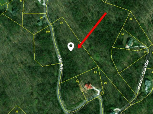 Lot 23 Adas Way, Maryville, TN 37803 (#1054509) :: Billy Houston Group