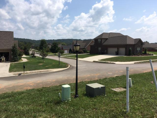Lot 35 Stone Harbor Blvd, Lenoir City, TN 37772 (#1054545) :: Billy Houston Group