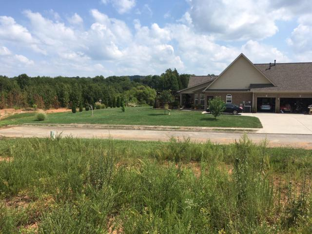 Lot 36 Stone Harbor Blvd, Lenoir City, TN 37772 (#1054549) :: Billy Houston Group