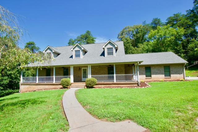 165 Goldenrod Lane, Friendsville, TN 37737 (#1054712) :: Billy Houston Group