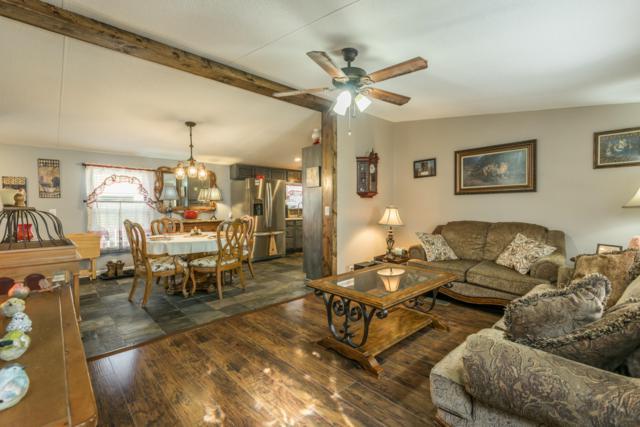 166 Lakeview Lane, Jacksboro, TN 37757 (#1054730) :: Billy Houston Group