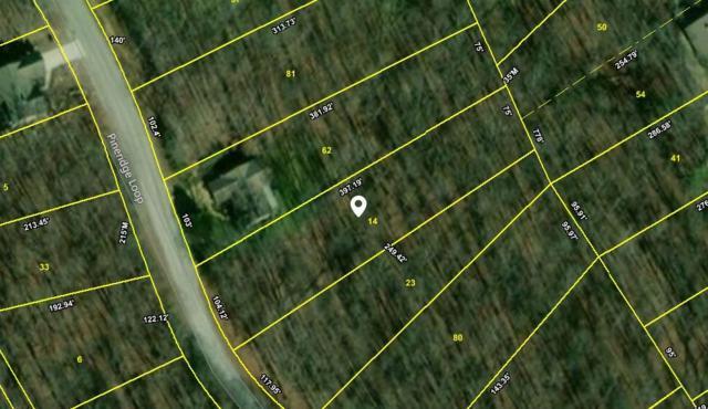 120 Pineridge Loop, Fairfield Glade, TN 38558 (#1054766) :: Billy Houston Group