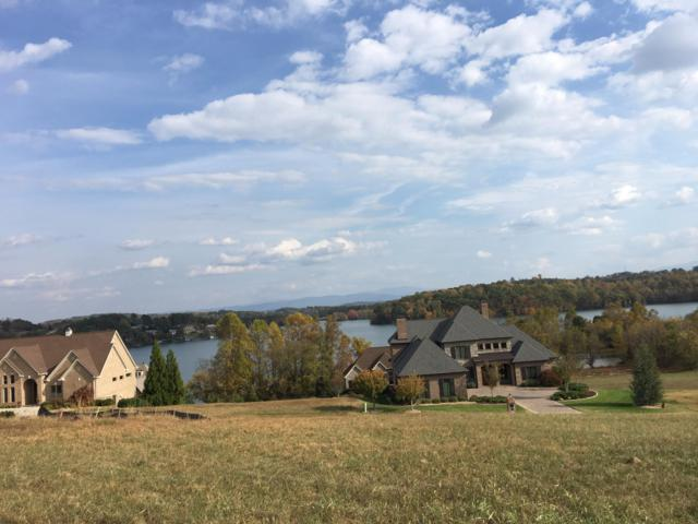 290 Whippoorwill Drive, Vonore, TN 37885 (#1054908) :: Billy Houston Group