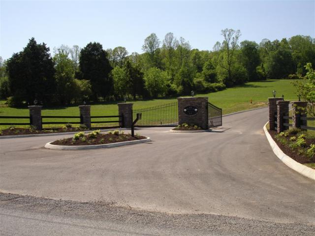 Dogwood Cove Drive, Spring City, TN 37381 (#1054912) :: Billy Houston Group