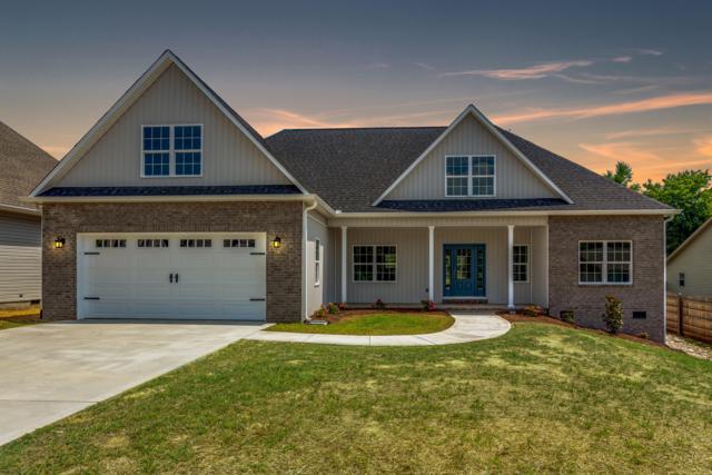 6820 Harvest Grove Lane, Knoxville, TN 37918 (#1054927) :: Billy Houston Group