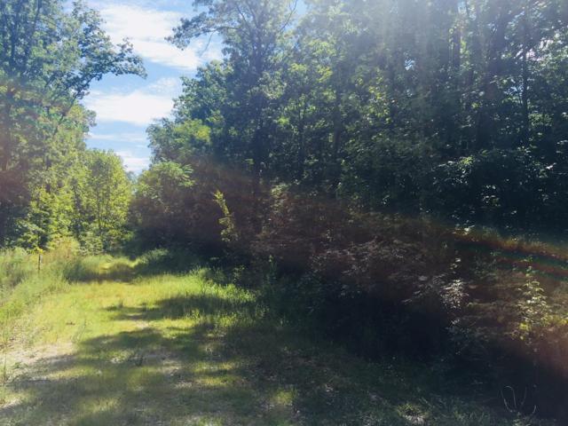 Lot 52 Lady Bug Lane, Jamestown, TN 38556 (#1054954) :: Billy Houston Group