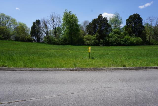 Dogwood Cove Drive, Spring City, TN 37381 (#1054974) :: Billy Houston Group