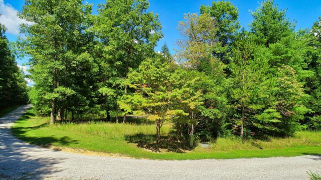 Long Branch Drive, Jamestown, TN 38556 (#1054978) :: Billy Houston Group