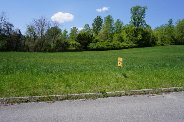 Dogwood Cove Drive, Spring City, TN 37381 (#1054980) :: Billy Houston Group