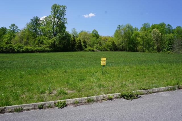 Dogwood Cove Drive, Spring City, TN 37381 (#1054985) :: Billy Houston Group