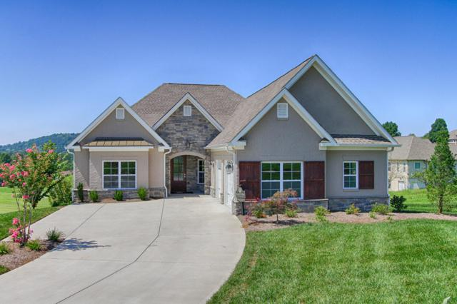 375 Rarity Bay Pkwy, Vonore, TN 37885 (#1055077) :: Billy Houston Group