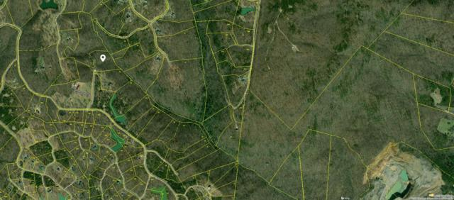 Lot 31 Mountain Top Tr, Dunlap, TN 37327 (#1055085) :: Billy Houston Group